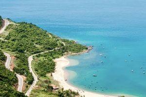 Đà Nẵng: Cấp thẻ khi tham quan bán đảo Sơn Trà