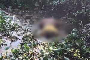 Tìm thấy thi thể người mẹ ôm 2 con nhảy cầu tự tử ở Hải Phòng