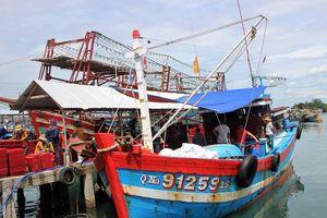 Quảng Nam còn 21 tàu hoạt động trên biển