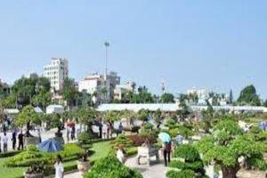 Việt Nam lần đầu tiên đăng cai lễ hội bonsai và suiseki