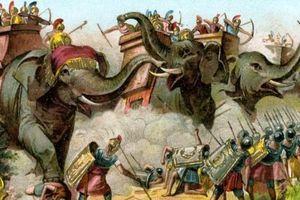 Sức hủy diệt khủng khiếp của vũ khí động vật trong chiến tranh