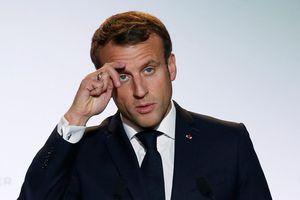 Tổng thống Pháp: NATO đang trong trạng thái 'chết não'