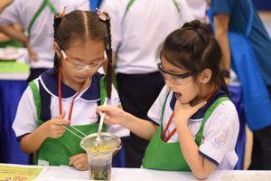 TPHCM: 650 học sinh tiểu học hào hứng thử nghiệm tái chế