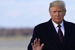 Tổng thống Mỹ Donald Trump phải bồi thường 2 triệu USD