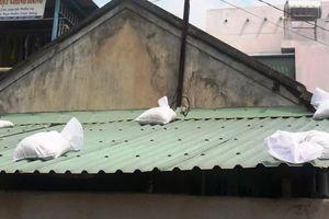 Bình Định: Di dời hàng nghìn hộ dân, chằng chống nhà cửa ứng phó bão số 6
