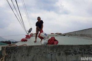 Bình Định, Quảng Ngãi cho học sinh nghỉ học ngày 11/11 để tránh bão