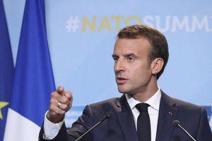 Tổng thống Pháp gây tranh cãi khi nói 'NATO đang chết lâm sàng'