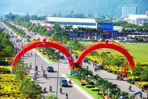 Bình Định: Tổ chức 3 đợt cao điểm tuyên truyền về đại hội đảng bộ các cấp