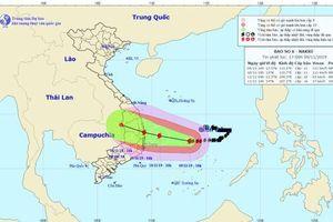 Tin bão số 6 mới nhất: Bão giật cấp 14, tiến gần bờ biển Quảng Ngãi - Khánh Hòa
