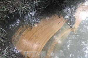 Bắt quả tang Trạm trộn bê tông nhựa để tràn 200 lít dầu thải ra môi trường
