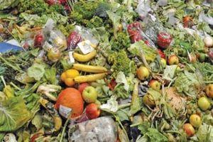 Hơn 70 nước ký cam kết giảm lượng thực phẩm lãng phí