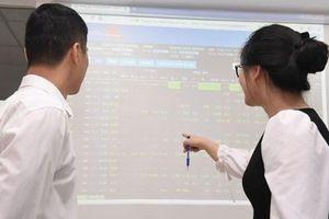 VN-Index vững mốc 1.000 điểm: Đầu tư nhóm cổ phiếu nào?