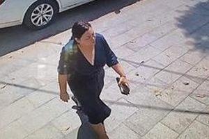 Nữ Việt kiều đứng sau vụ truy sát đại ca giang hồ Quân 'xa lộ' là ai?