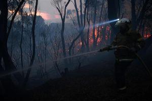 Cháy rừng hoành hành ở Australia