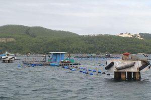 Hai người Khánh Hòa mắc kẹt ngoài biển khi bão vào