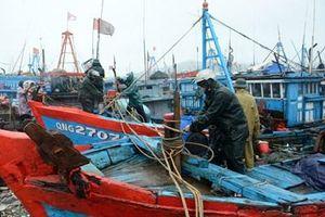 LLVT tỉnh Quảng Ngãi sát cánh cùng nhân dân vượt bão