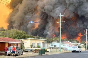 Australia: Cháy rừng gây thiệt hại lớn