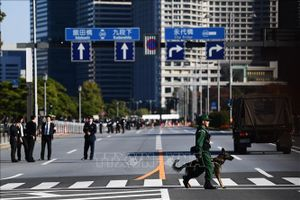Nhật Bản thắt chặt an ninh ở Tokyo trước lễ diễu hành sau đăng quang của Nhật hoàng