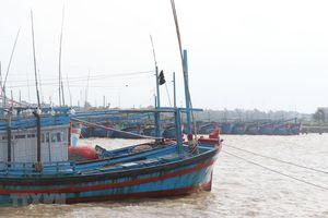 Kiên quyết không để người dân ở lại trên tàu, thuyền, lồng bè khu vực ảnh hưởng của bão