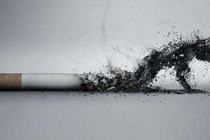 Sự thật đáng sợ từ thuốc lá