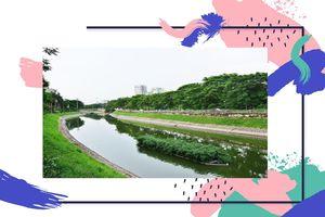 Sẽ có một ngày, sông Tô Lịch xanh như Danube?