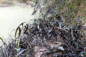 Phát hiện dầu thải bị đổ xuống đầu nguồn sông Hiếu