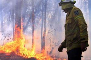 Cháy lớn làm 3 người chết, Australia ban bố tình trạng khẩn cấp