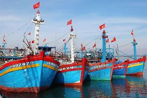 Quy định mới về việc đổi bằng tàu cá sang phương tiện thủy