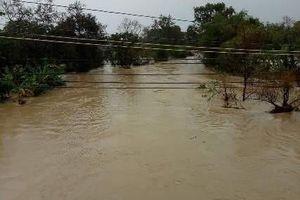Đắk Lắk: Mưa liên tục dài ngày, đập thủy lợi 169.000 khối nước có nguy cơ bị vỡ