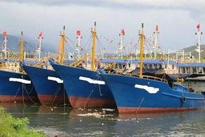 Tàu cá 67 nằm bờ, ngư dân và ngân hàng cùng 'mắc cạn'