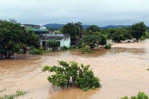 Ảnh hưởng của bão số 6, nhiều trường tại Đắk Lắk cho học sinh nghỉ học