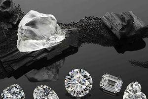 Doanh nghiệp than đá và doanh nghiệp kim cương