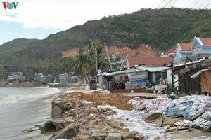 Bình Định cần khẩn trương gia cố bờ kè Nhơn Hải