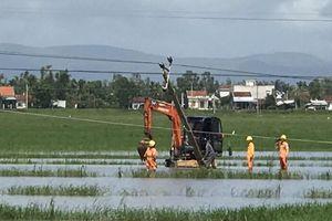 Khôi phục cấp điện cho khách hàng bị ảnh hưởng do bão số 6