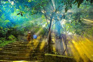 Ngôi chùa cổ hơn 1.000 năm trên đỉnh núi Bái Đính