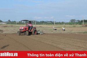 Các xã vùng ngoại thành khai thác tiềm năng đất đai, phát triển nông nghiệp hàng hóa