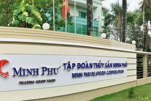 'Vua tôm' Minh Phú báo lãi giảm 36% trong 9 tháng, cổ phiếu đi xuống