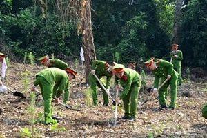 Tuổi trẻ BCA chung tay trồng 1.200 cây xanh 'Dâng Bác - Ơn thầy'