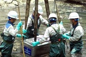 Tổ chức làm sạch sông Tô Lịch không tuân thủ đúng yêu cầu của thành phố