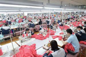 May Sông Hồng dự chi khoảng 225 tỷ đồng tạm ứng cổ tức bằng tiền mặt cho cổ đông
