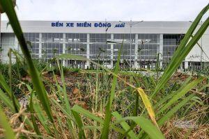 Cỏ dại um tùm bên trong bến xe hiện đại nhất Đông Nam Á của Sài Gòn