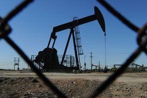Thị trường dầu 'đóng băng' sau tuyên bố của Tổng thống Trump