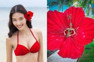 Hoàng Thùy loại trang phục hoa dâm bụt, ai ngờ ý tưởng này được đối thủ Miss Universe dùng lại!