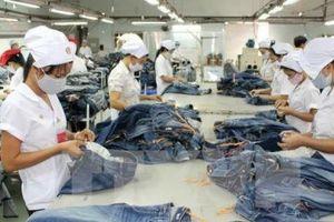 Đề nghị xem xét lại các rào cản thương mại hai nước Việt Nam - Ấn Độ