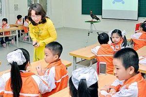 Áp dụng nhóm học tập để kiến tạo thế hệ học tập