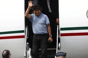 Tị nạn ở Mexico, cựu Tổng thống Bolivia tiếp tục đấu tranh chính trị