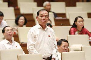 Thí điểm bỏ HĐND cấp phường của Hà Nội có vi hiến không?