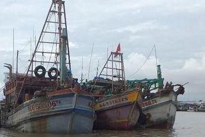 Ngư dân rủ nhau đi làm công nhân khiến thiếu hụt lao động đi biển