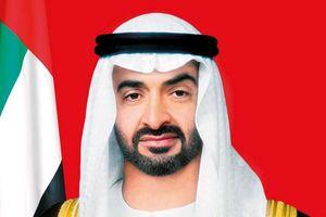 UAE và Ai Cập công bố chương trình hợp tác đầu tư trị giá 20 tỷ USD