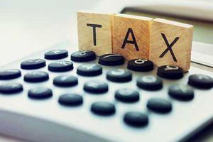 TP.HCM: Nợ thuế từ đất tăng mạnh